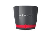 Ryght EXAGO GRIS/ROUGE