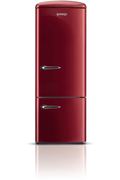Gorenje RK 60319 OR