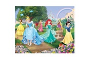 Walltastic Papier peint photo murale princesses disney 305 x 244 cm