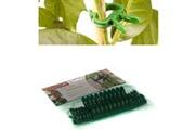 Guizmax 20 clips pour plantes tuteur clip plante collier lien