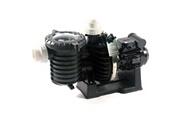 Sta Rite Pompe à filtration 1.5cv 23m3/h triphasé - sta rite - 5p6rf3