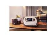 Pure Système tout-en-un avec radio fm/dab+ pour téléphone portable/tablette chêne gris