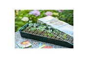 No-name Mini-serre - pack germination - pack bouturage mini-serre de culture hydroponique 4 x 16 alvéoles