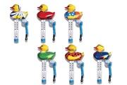 KOKIDO Thermomètre mr duck - kokido