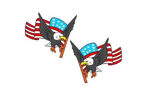 Generic 1 set / 2pcs car decal flying hawk auto camion capot côté d'eagle drapeau etats-unis autocollant sticker 211