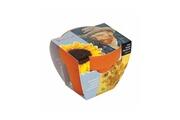 Astuceo Pot à semis pour tournesol van gogh - lot de 2