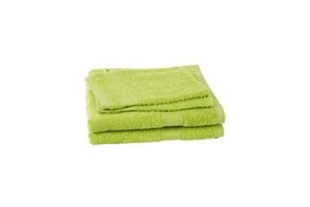 Lot de 2 serviettes + 2 gants de toilette élégance - vert