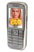 Nokia 6233 GRIS