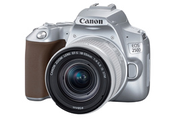 Canon EOS 250D Argent + objectif EF-S 18-55 mm f/4-5.6 IS STM